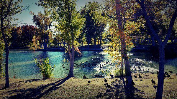 Floyd Lamb State Park. | Yelp