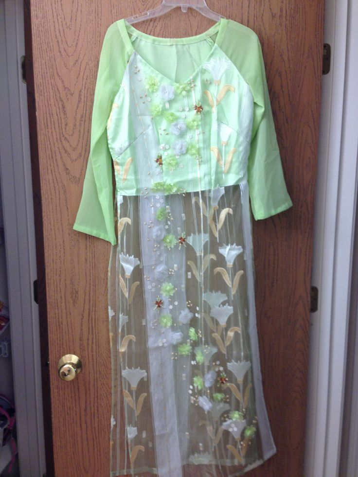 Vietnamese long dress ( Ao dai )
