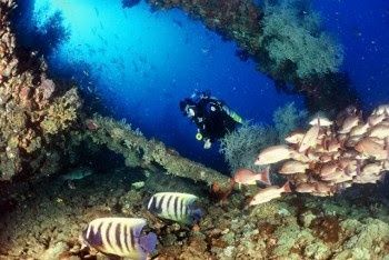 MUST dive the SS Yongala wreck in Australia
