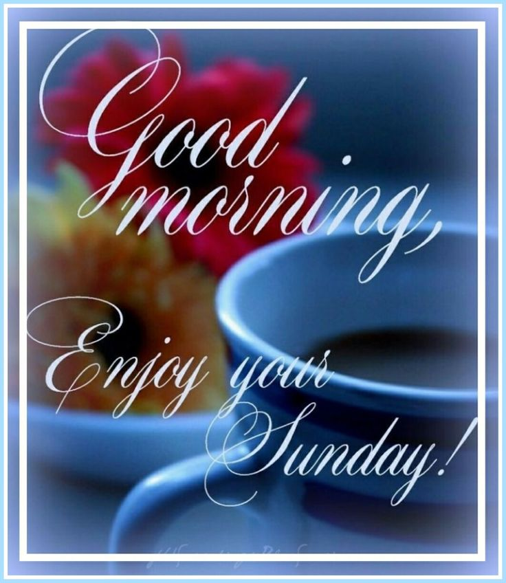 #sunday #good #morning #goodmorning #happy #day #blessings #good #morning #goodmorning #happy #day
