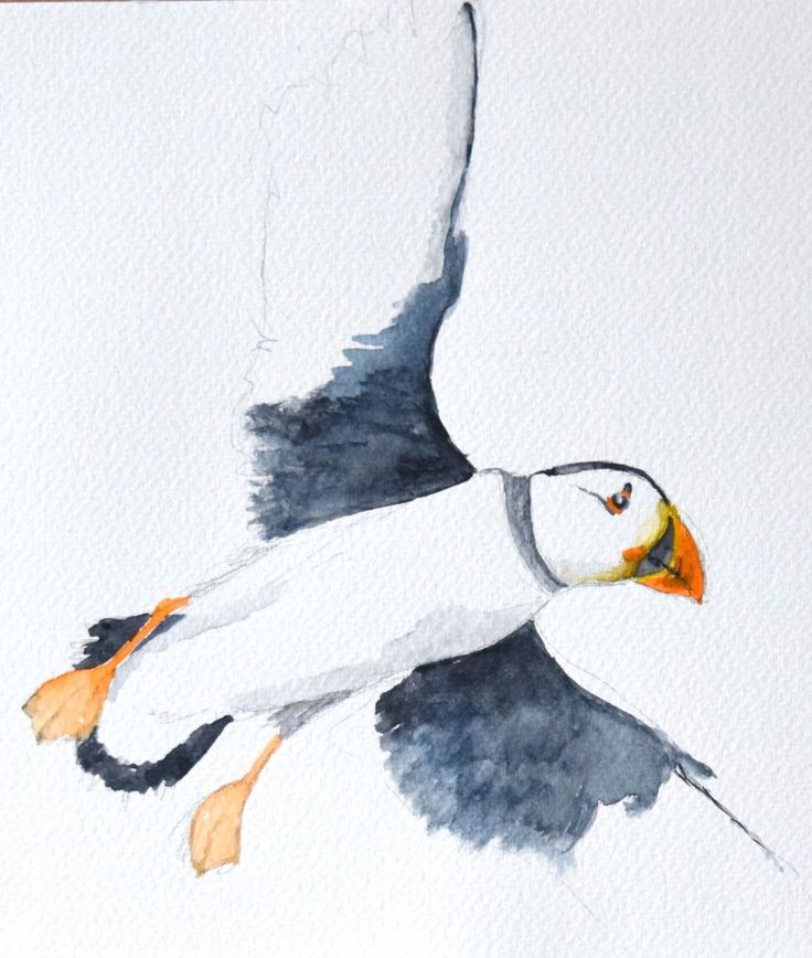 Oil painting, some watercolours, mostly with a seaside theme – currently working on watercolour illustrations for a book on the Little Tern reserve at Gronant Dunes, Denbighshire.