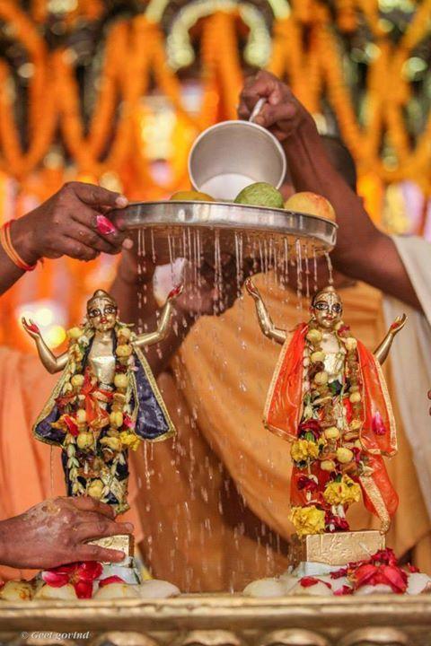 Pushya Abhishek in Iskcon Vrindavan! 5/1/15 (Album 57 photos) Pushya Abhishek of their Lordship Sri Sri Krishna Balram Gaura Nitai Sri Sri Radha Shyamsundara and Lalita Vishakha Devi with pure cow...