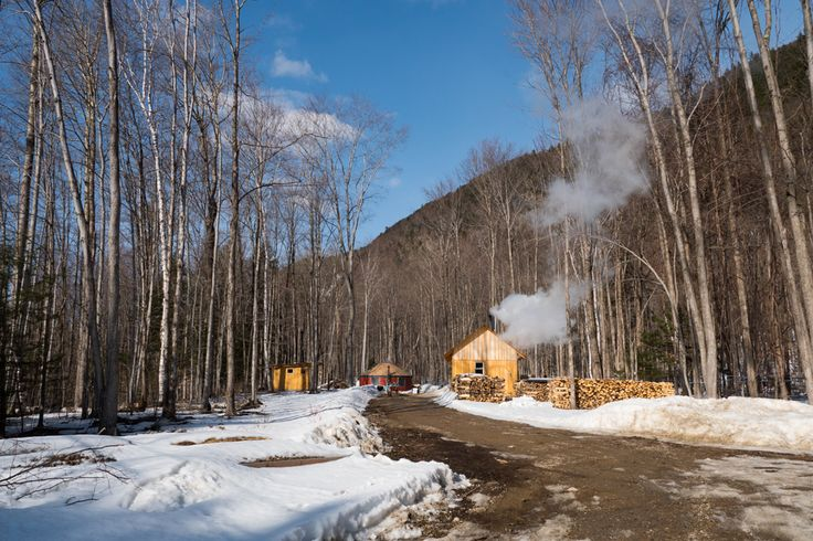 Family with young son visits Little Hogback Mt for maple sugaring weekend  Mini-Video CLICK LINK  carolynbatesphoto.com/visit-to-little-hogback-farm-for-maple-sugaring.html
