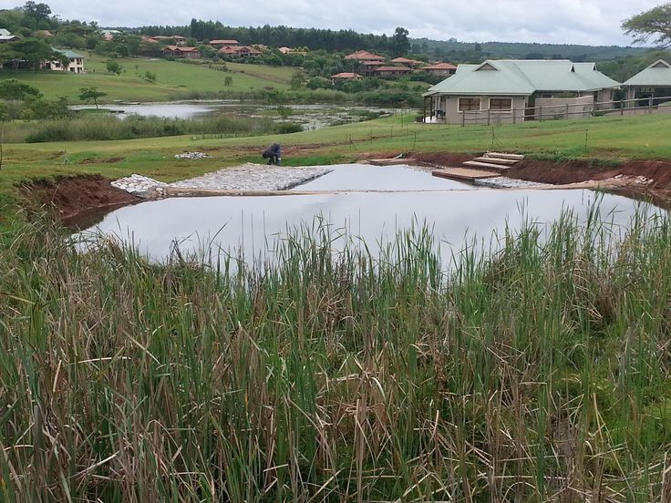 Upstream view of completed #eco-pool