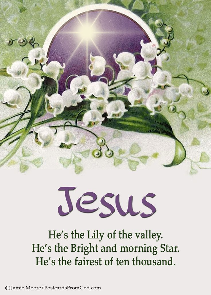 I have found a friend in Jesus, He's everything to me, He's the fairest of ten thousand to my soul; The Lily of the Valley, in Him alone I see All I need to cleanse and make me fully whole. In sorrow He's my comfort, in trouble He's my stay; He tells me every care on Him to roll.  He's the Lily of the Valley, the Bright and Morning Star, He's the fairest of ten thousand to my soul. Charles W. Fry, 1881