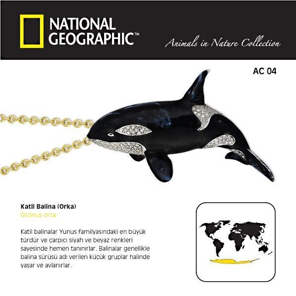 NG - Animals in Nature -Katil Balina (Orka) Kolye