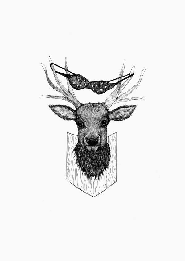 Animal Obscurities By DWQ Creative
