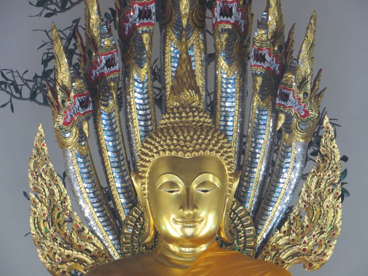 Thailand - Bangkok  One of the most populated and visited cities in the World. High temperatures, humidity and particular odors characterize the capital of Thailand on the one hand and on the other, it becomes more and more technological and rich because of trade and tourism.