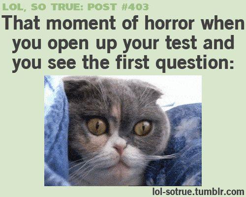 Gifs humor, gifs funny ...For more hilarious gifs visit www.bestfunnyjokes4u.com/