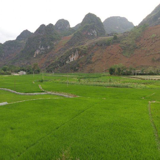 Vietnam Country Side  via