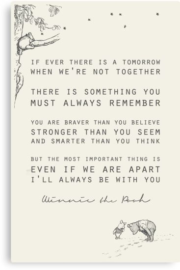 Winnie the Pooh inspiration for grief and loss over a person, or pet loss inspiration.  #petloss #inspiration #love