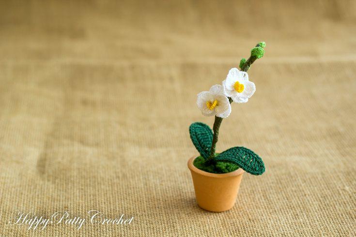 Mini Moth Orchid Pot