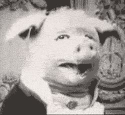 io9.com Updates: This freaky vampire pig is credited as the first meme of the 20th Century