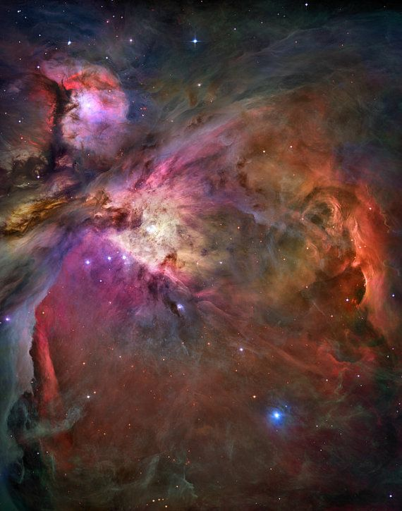 orion nebula location - 570×725