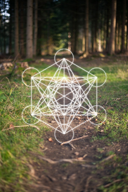 "Metatron's Cube, the ""Fruit of Life"" which is the only shape that contains all five of the Platonic solids. Metatron's Cube represents the gridwork of our consciousness and the framework of our Universe. It is the Matrix in which everything is contained in our three dimensional being."