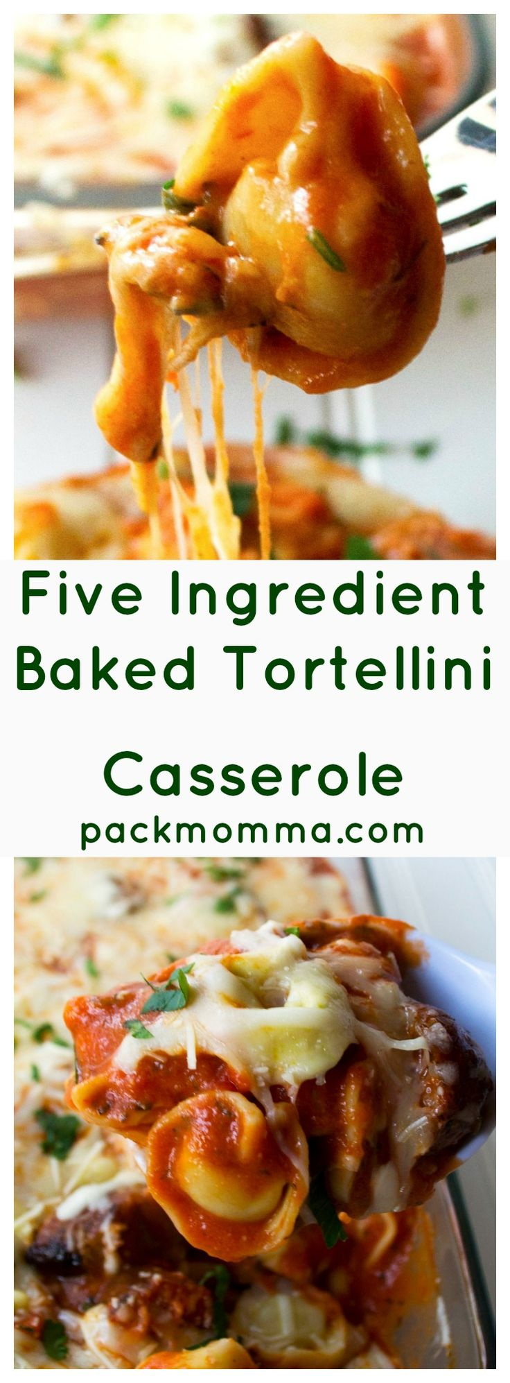Five Ingredient Baked Tortellini Casserole | This Five Ingredient Baked Tortellini Casserole is the ultimate comfort food. A hot, hearty, delicious meal with only five ingredients and in 30 minutes! | Pack Momma | www.packmomma.com
