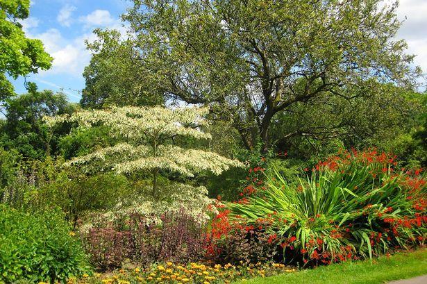 Beautiful gardens of Roath park Cardiff