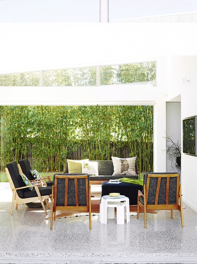 **Bamboo** A non-invasive clumping variety is a good option for a garden screen, such as *Bambusa multiplex* 'Alphonse Karr'. Its pinkish shoots become green-striped yellow culms. It responds well to pruning and reaches between 5-8m.   Photo: Tony Scott / bauersyndication.com.au