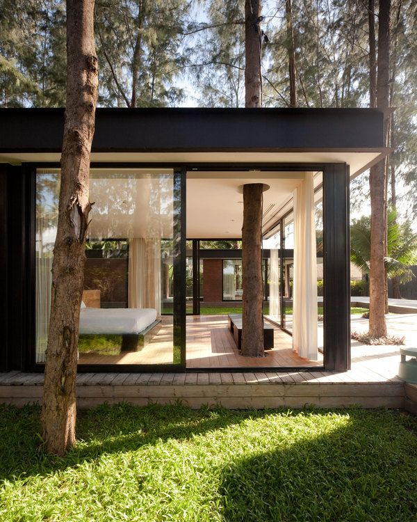 Residence Villa Noi. Tree in glass extension