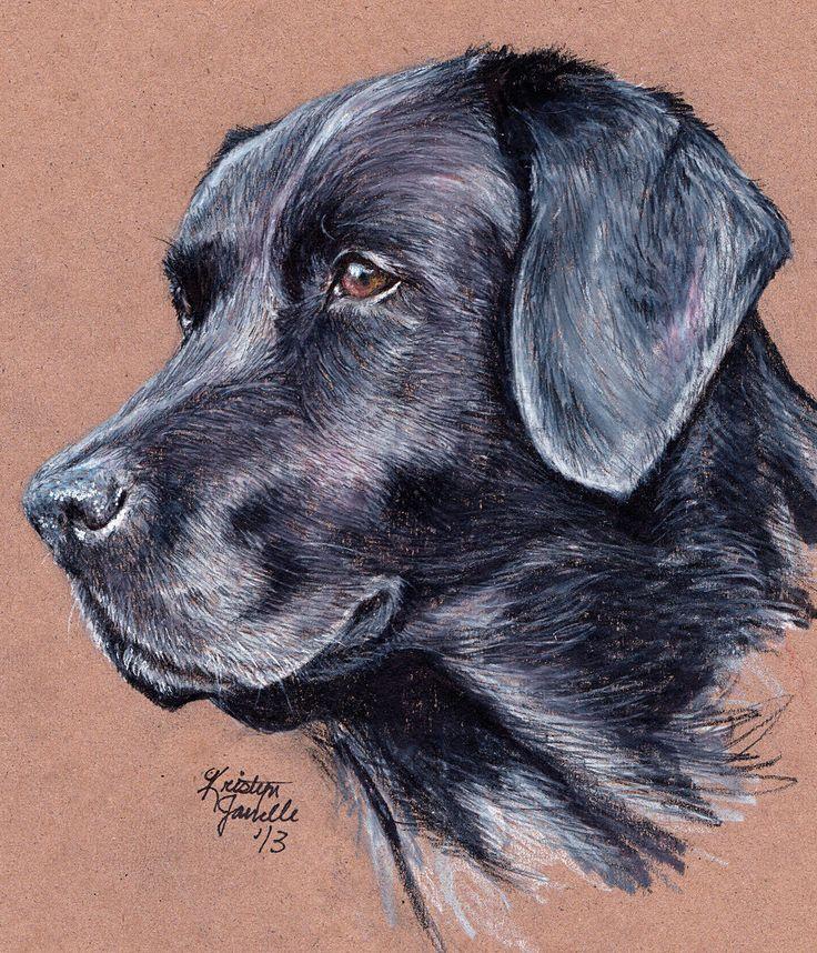 how to draw a black lab dog