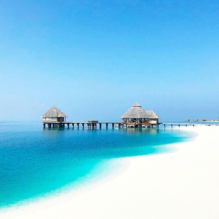 17 best island quotes on pinterest beach vacation quotes for Conrad maldives rangali