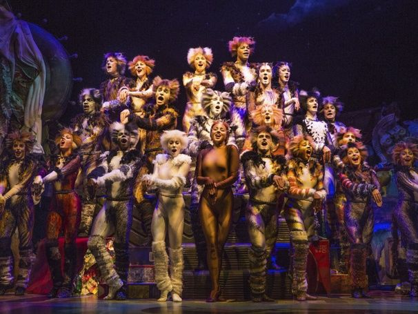 Photo 8 of 8   The company of 'Cats' on Broadway   Show Photos: Cats   Broadway.com