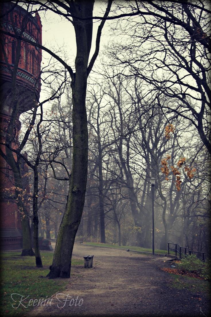 Poland, Bydgoszcz, Szwederowo - full of mystery