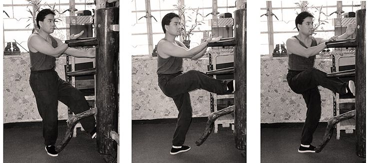 SiFu, Donald Mak,  international Wing Chun Organization, Wing Chun