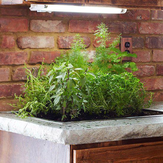 Top 25+ best Plant grow lights ideas on Pinterest | Grow lights ...