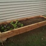 How To Build Your Own Container Garden From Reclaimed Shipping Pallets - The Fun Times Guide to Living Green