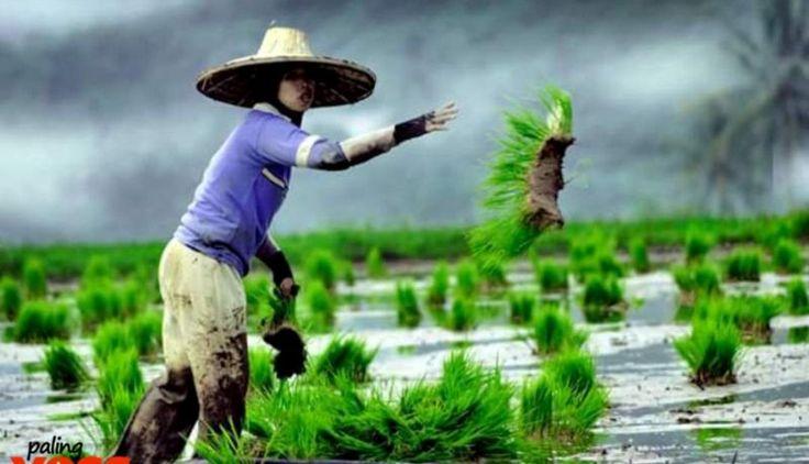 Potret Kehidupan, Kumpulan Fotografi Tentang Pedesaan dan Kota di Sore Hari | PALINGYESS.COM | BERITA UNIK, DUNIA ANEH, VIDEO DAN GAMBAR LUCU