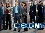 Free Streaming Video CSI: NY Season 9 Episode 10 (Full Video) CSI: NY Season 9 Episode 10 - The Real McCoy Summary: The co-owner of a popular bar is found dead. Mac follows Christine's advice to tear his to-do list up and relax on his day off which will lead to Mac sharing lunch and memories with a complete stranger.