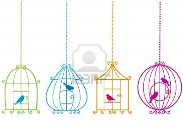 set of ornamental birdcages with birds