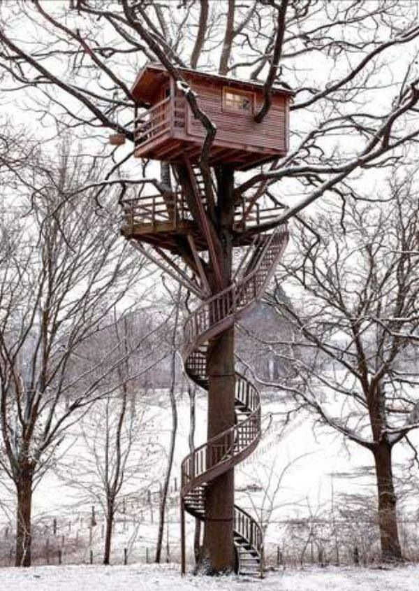 I love these spiral stairs on this tree house! I'm not sure what it does to the tree involved though...