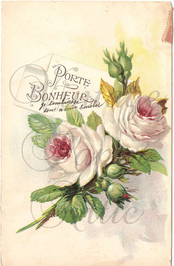 Shabby Pink Roses French Postcard Antique Chromolithograph from Vintage Paper Attic