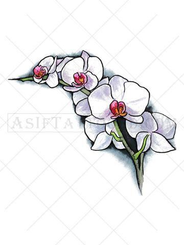 Orchid Flower Tattoo - AsIfTattooed.com