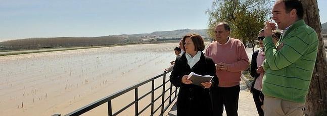 Afectadas más de 400 hectáreas de cultivo de Granada por las inundaciones