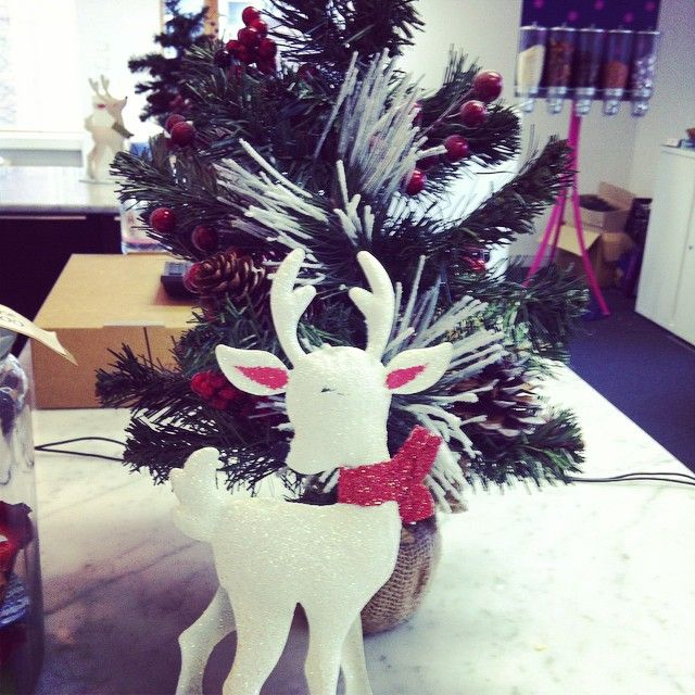 It would be 'Rudolf' not to like our office reindeer! #christmas #justkidding #reindeerjokes #itsthelittlethings