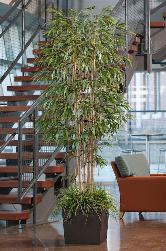 une plante artificielle genre bambou artificiel dans pot interieur