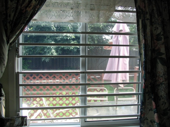 Removable Window Bars In Expanded And Locked Position