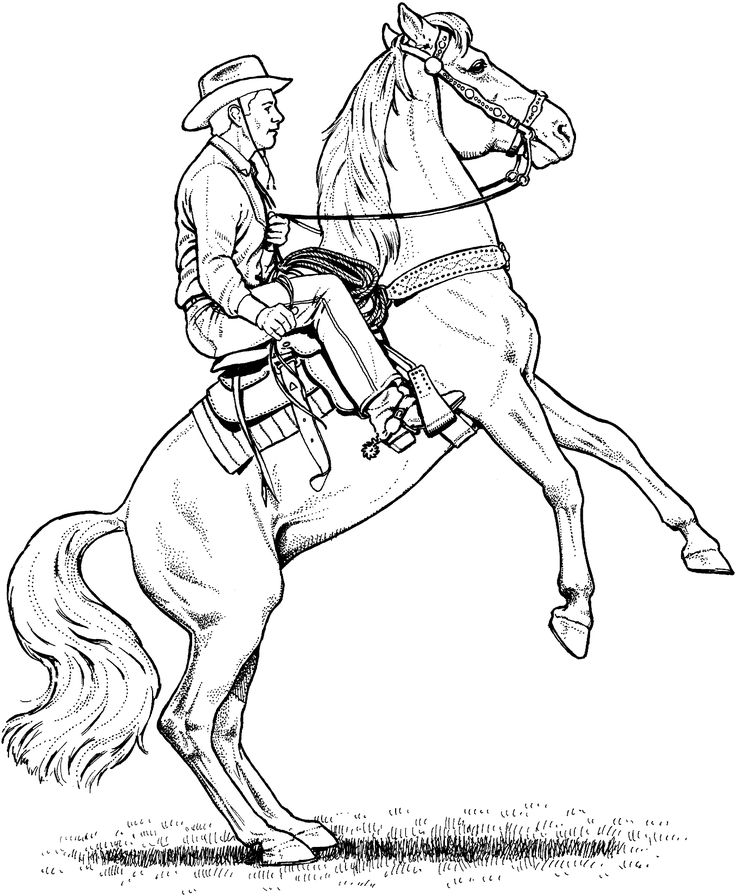 19 best Coloring Pages images on Pinterest Coloring books - best of welsh pony coloring pages