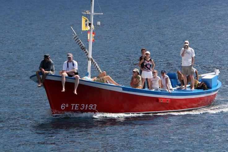 Beispielhafter Ablaufplan des Praktikums Tag 1  Flug nach Teneriffa, Ankunft auf La Gomera Tag 2  Willkommen, Einführung und Vorstellung des Programms Tag 3  Whale watching research trip (4h) Tag 4  Whale watching research trip (4h) Tag 5  Arbeitstreffen 1 Tag 6  Whale watching research trip (4h) Tag 7  …