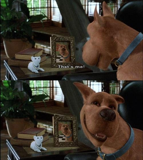 Scooby Doo jeje :3 that is mee :3