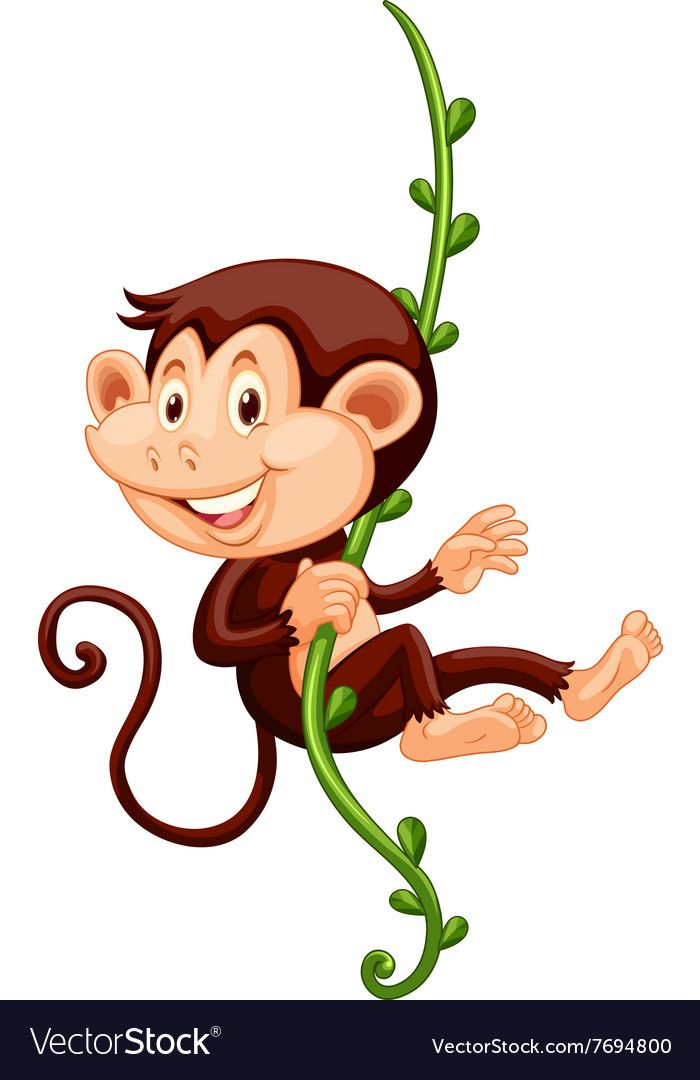 Little Monkey Climbing Up The Vine Download A Free Preview Or High Quality Adobe Illustrator Ai Eps Pdf And Hig Monkey Drawing Vine Drawing Drawing For Kids