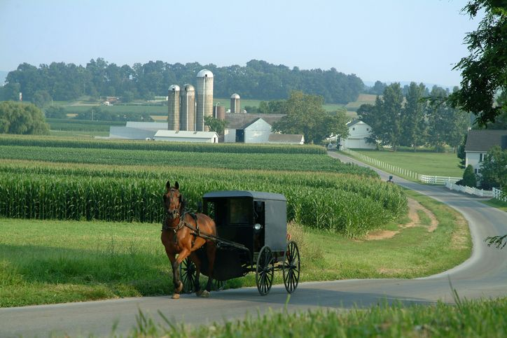 Amish family by horse-drawn carriage, Lancaster County