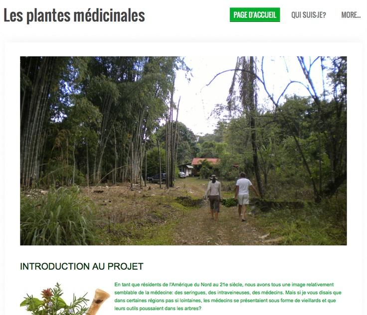 Maude Laflamme - Recherche sur les plantes médicinales - San Isidro del General - Costa Rica