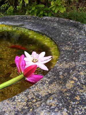 17 Best Images About Meditation Artwork On Pinterest Reiki Meditation And Meditation Art
