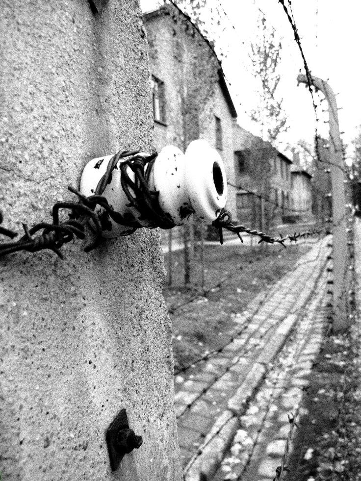 Auschwitz, Poland, Drifter Alley, Travel Photos