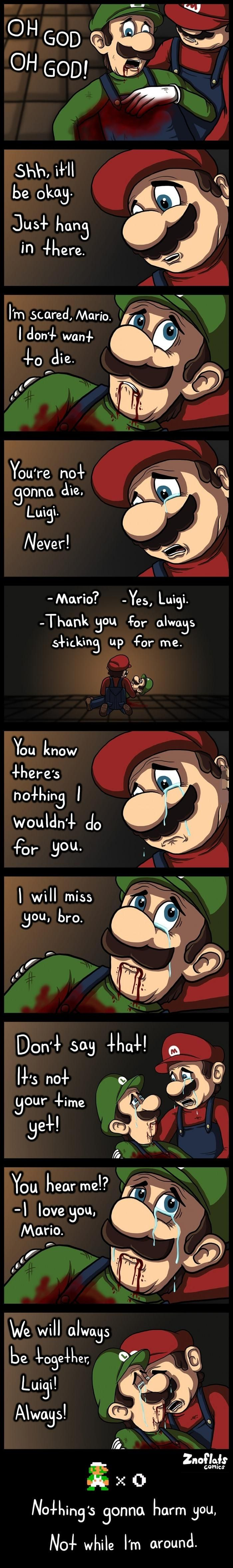 The Love Story Between Mario and Luigi