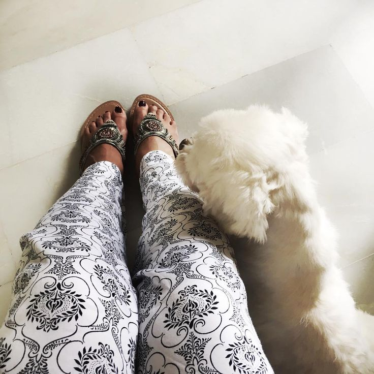 It's a printed pllazzo and sequined chappals kind of day !! Our dog looks along!! Tell us how's your Tuesday? #yourindiastore #fashion #summer #instadog#indianwear #printed#cotton #fabric#whiteonwhite#fluffydog#lasaapso#india#indian#indiandressing#potd#ootd#dogslife